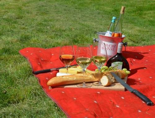 Ab zum Picknicken